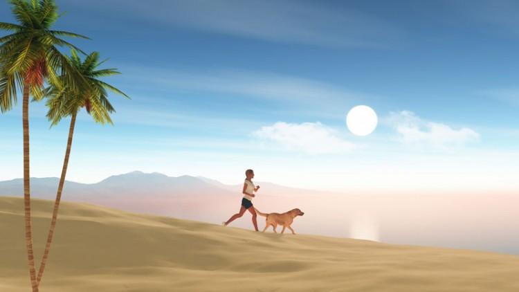 Come portare il vostro cane in vacanza