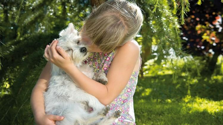 La Pet Therapy: il potere curativo dei cani
