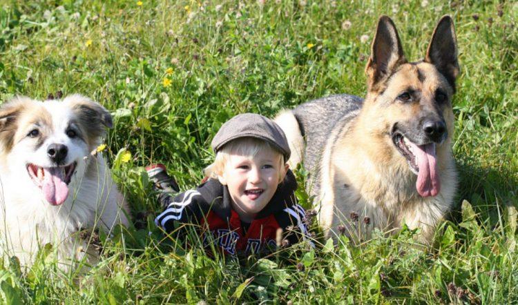 Cani e bambini: per crescere bene insieme